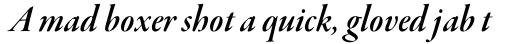 Garamond Premr Pro Display SemiBold Italic sample