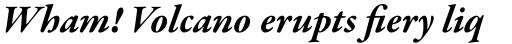 Garamond Premr Pro Bold Italic sample
