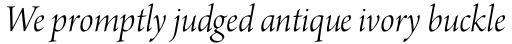 Arno Pro Display Light Italic sample