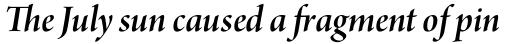Arno Pro Display SemiBold Italic sample