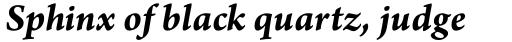 Arno Pro SmText Bold Italic sample