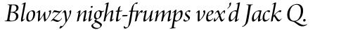 Arno Pro Display Italic sample