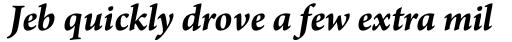 Arno Pro Bold Italic sample