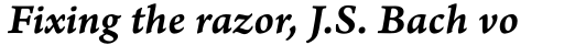 Arno Pro Caption SemiBold Italic sample