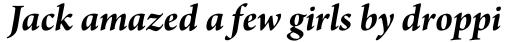 Arno Pro SubHead Bold Italic sample