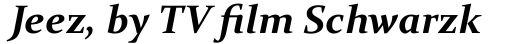 Constantia Bold Italic sample