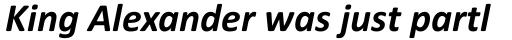 Calibri Bold Italic sample