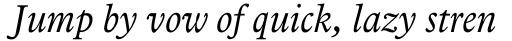 Arbesco DT Book Italic sample