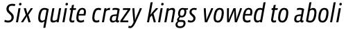 Vista Sans Narrow Book Italic sample