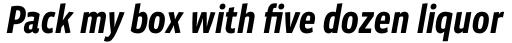 Vista Sans Narrow Bold Italic sample