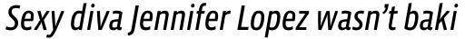 Vista Sans Narrow Italic sample