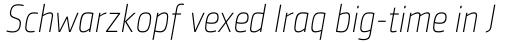 Sentico Sans DT Cond Thin Italic sample