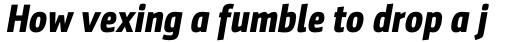 Sentico Sans DT Cond Bold Italic sample
