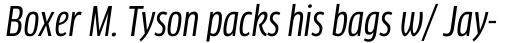 FF Clan Pro Cond News Italic sample