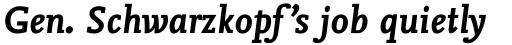 FF Nexus Mix Pro Bold Italic sample