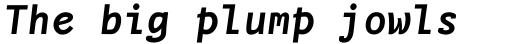 FF Nexus Typewriter Pro Bold Italic sample
