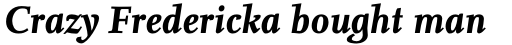 FF Nexus Serif OT Bold Italic sample