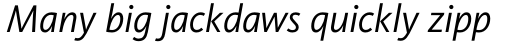 FF Kievit Pro Italic sample