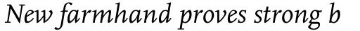 FF Scala OT Italic sample