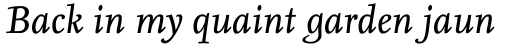 FF Nexus Serif Pro Italic sample