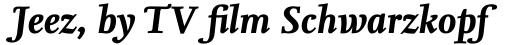 FF Nexus Serif Pro Bold Italic sample
