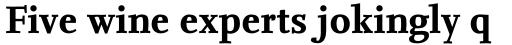 FF Nexus Serif OT Bold sample