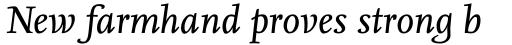 FF Nexus Serif OT Italic sample