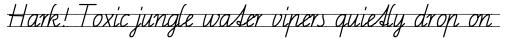 FF Schulschrift OTC Linien Zwei sample