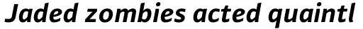 FF Plus Sans Pro Bold Italic sample