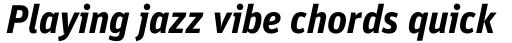 FF Unit Pro Bold Italic sample