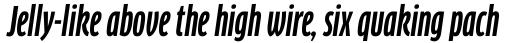 FF Clan Pro Comp Bold Italic sample