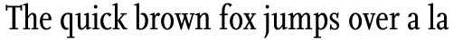 FF Scala Pro Cond Regular sample