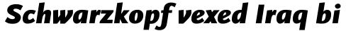 FF Scala Sans Pro Black Italic sample