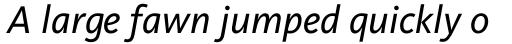 FF Kievit Pro Book Italic sample
