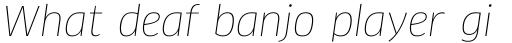 FF Clan Pro Thin Italic sample