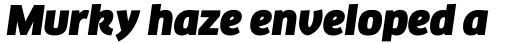 FF Clan Pro Ultra Italic sample