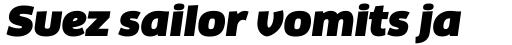 FF Clan Pro Wide Ultra Italic sample