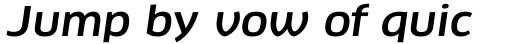 FF Clan Pro Wide Medium Italic sample