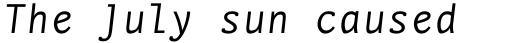 FF Nexus Typewriter Pro Italic sample
