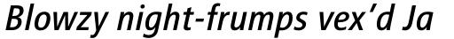 FF Transit Front Neg OT Italic sample
