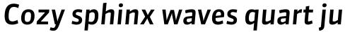 FF Sanuk OT Medium Italic sample