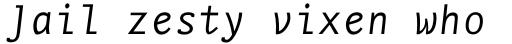 FF Nexus Typewriter OT Italic sample