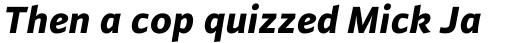 FF Plus Sans Pro ExtraBold Italic sample