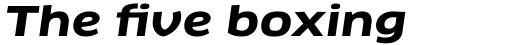 FF Clan Pro Extd Bold Italic sample