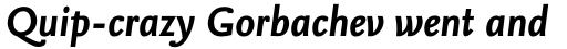 FF Nexus Sans Pro Bold Italic sample