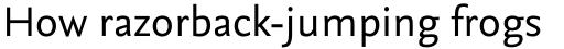 FF Nexus Sans OT sample