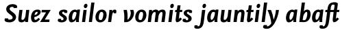 FF Nexus Sans OT Bold Italic sample