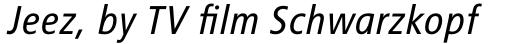 FF Transit Back Neg OT Italic sample