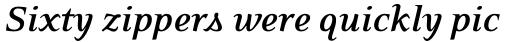Eidetic Neo Bold Italic sample