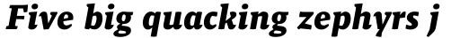 Malaga Bold Italic sample